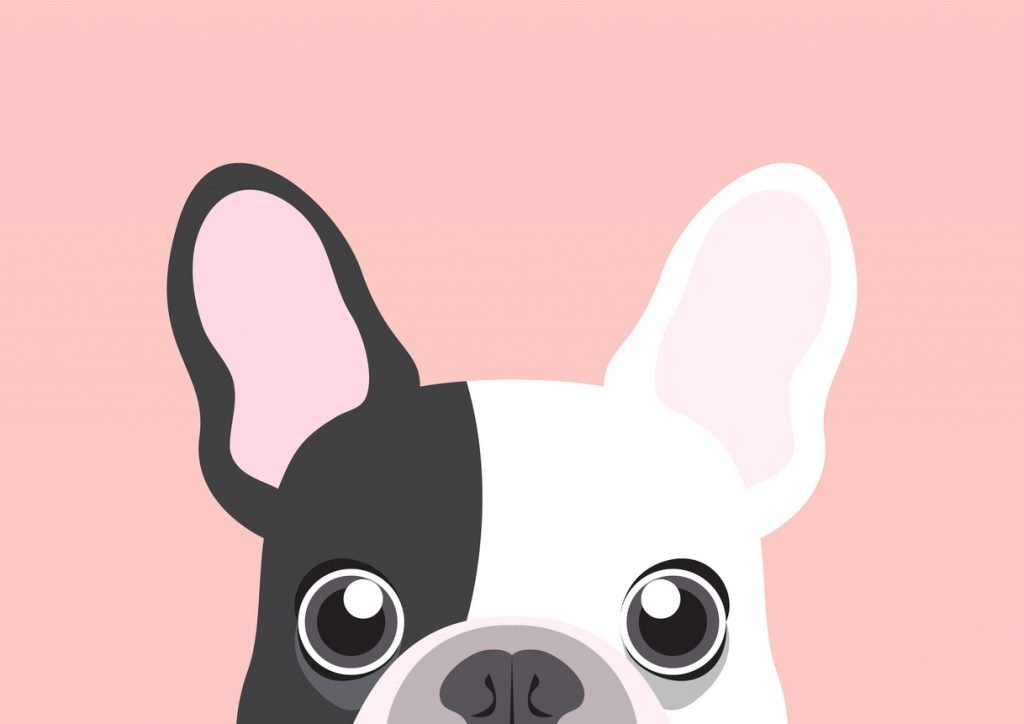 What is a French Bulldog Dog Harness?
